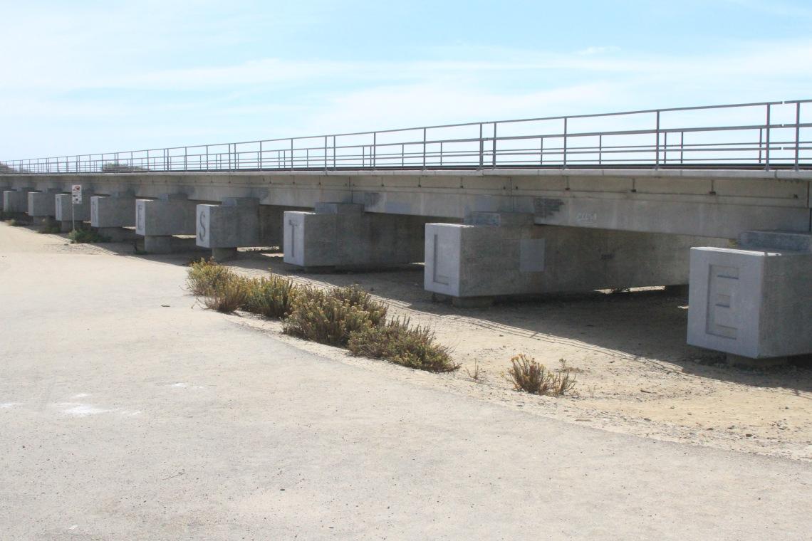 california - trestles (1)