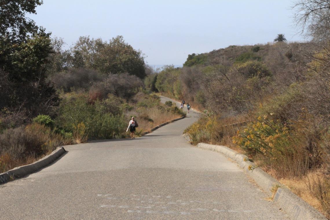 california - trestles (5)