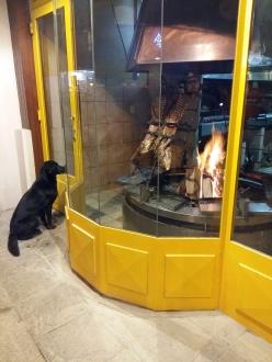 Vitrine de um dos restaurantes que servem o Cordero Fueguino, na rua San Martin, centro da cidade de Ushuaia.