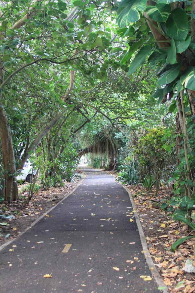North Shore Bike trail