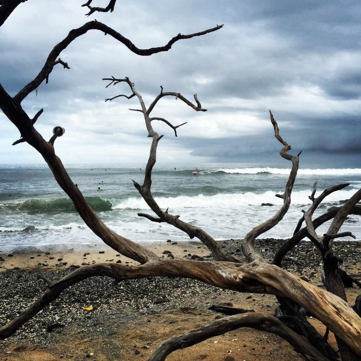 Playa Avellana, nossa preferida